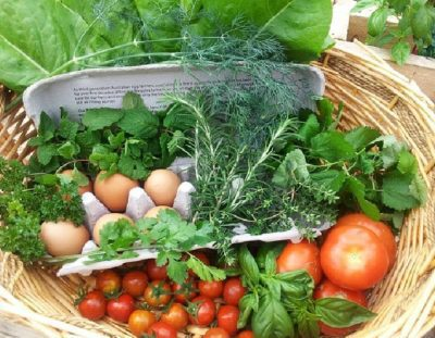 Sustainable Agriculture The Natural Resources On Your Doorstep