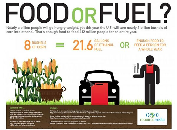 biofuels corn-harvested-ethanol-could-feed-millions